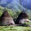 Explore The Ethnic And Culture Of Flores Island Eco Tours Indonesia
