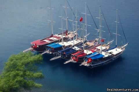 Tum Tour Gulet Motor Yacht Charter & Blue Cruise Yacht Charter, Blue Cruise, Gulet Cruise, Yacht Cruise