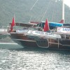 Tum Tour Gulet Motor Yacht Charter & Blue Cruise