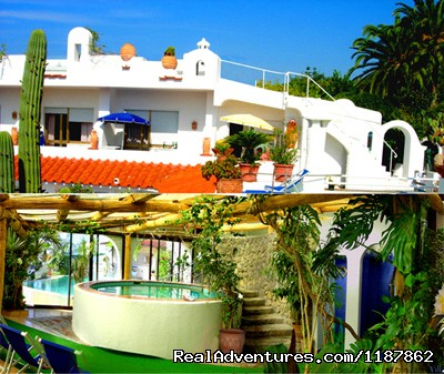 Apartments in a Botanical Garden, Ischia (Amalfi): Part of the main building and the indoor pool