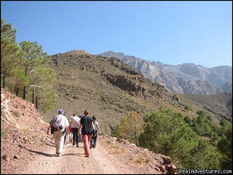 trekking in Toubkal: walking