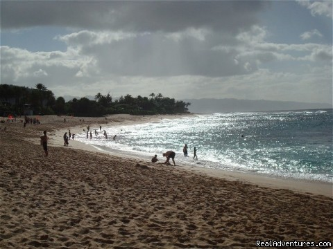- Aloha North Shore Vacation Home