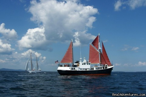 Sail The Caribbean On A Private Yacht Sailing & Yacht Charters Belfast, Puerto Rico