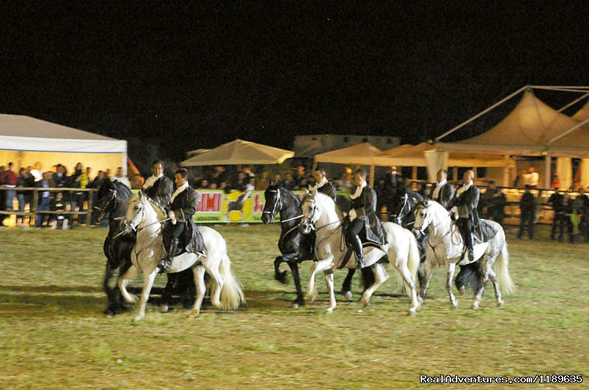 Lovely show at Agrigento | Image #6/21 | Sicily - Horse Riding and Activity Holidays