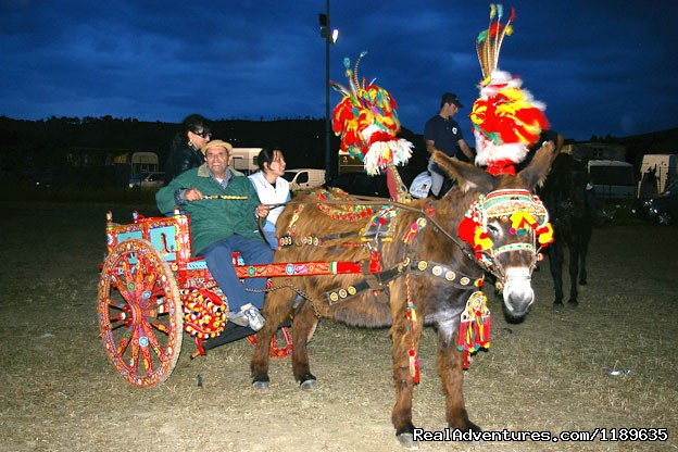 Colourful traditional cart at one of the shows. - Sicily - Horse Riding and Activity Holidays