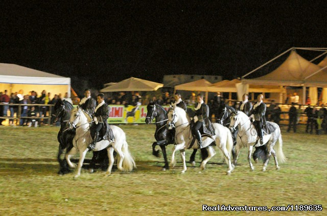Sicily - Horse Riding Vacations (British run) Lovely show at Agrigento