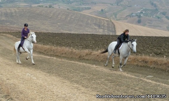 Enjoying a full out gallop - Sicily - Horse Riding and Activity Holidays