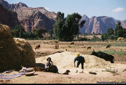 Highlands of Tigray | Image #10/17 | Tours in Ethiopia ..The right way