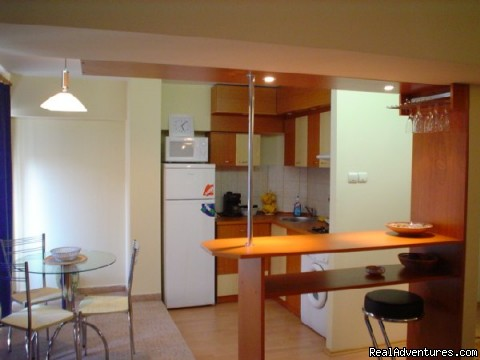 Cristal Accommodation in Bucharest apartments: Apartment Kitcken