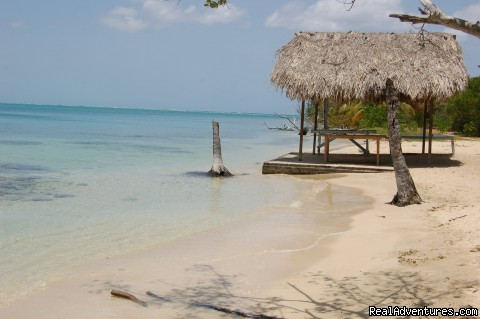 - Fish Tobago guest house