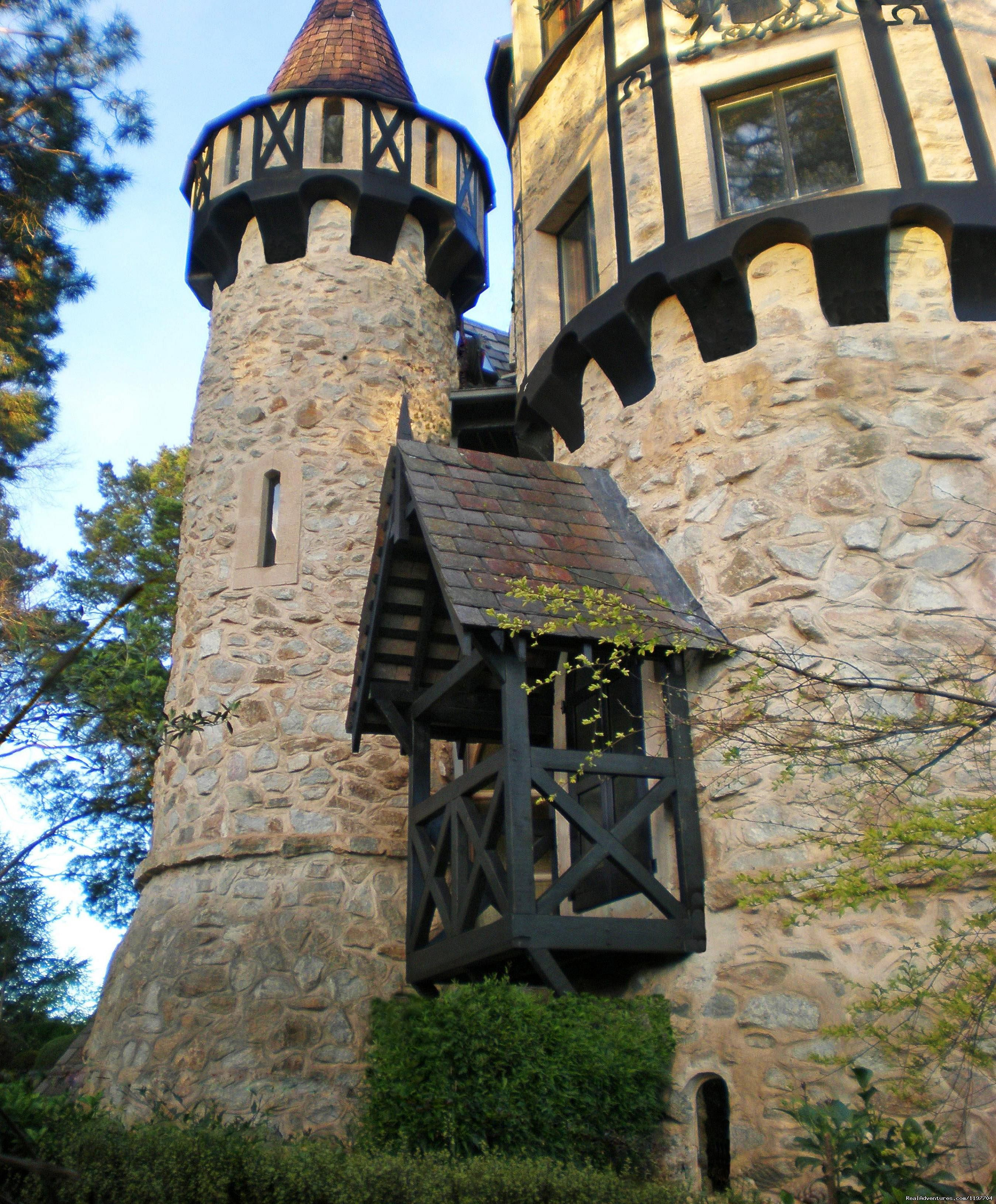 Castle Chambers at Thorngrove Manor