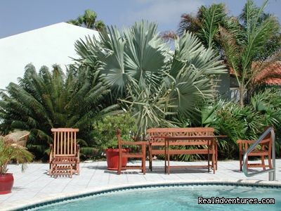 Aruba Harmony Apartments B & B - Aruba Harmony, a charming place to be!