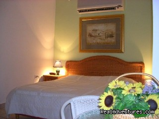 Aruba Harmony Apartments..Harmony Suite De Luxe - Aruba Harmony, a charming place to be!