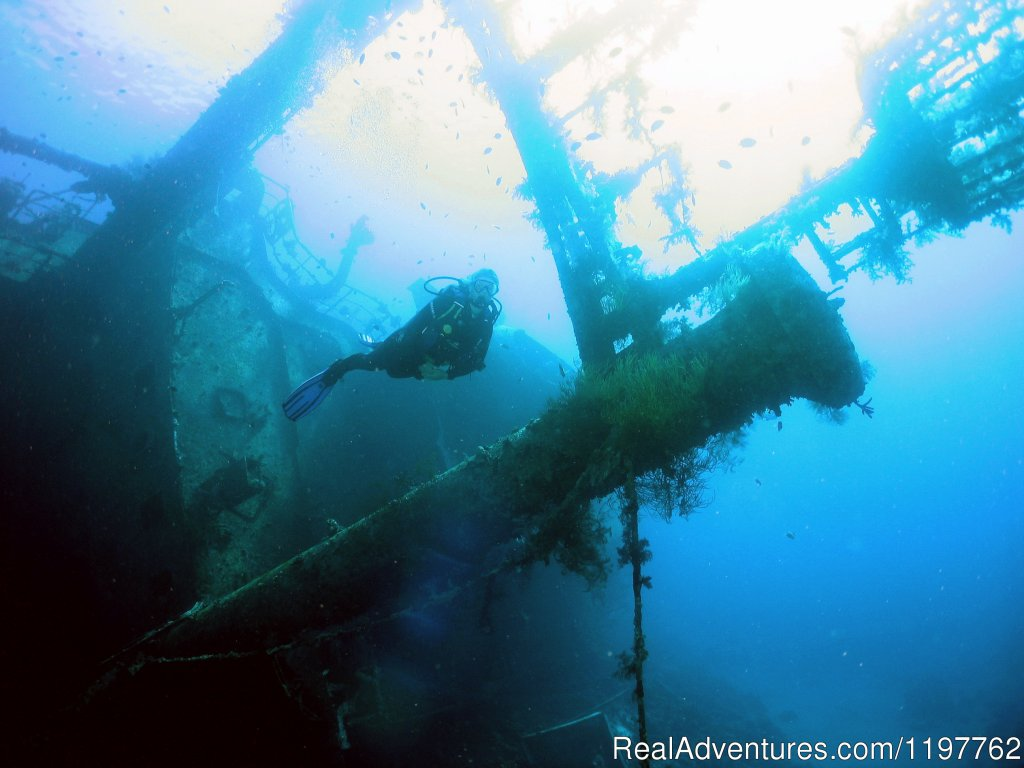 Mast of Cedar Pride | Image #19/22 | Red Sea Diving - With out the crowds