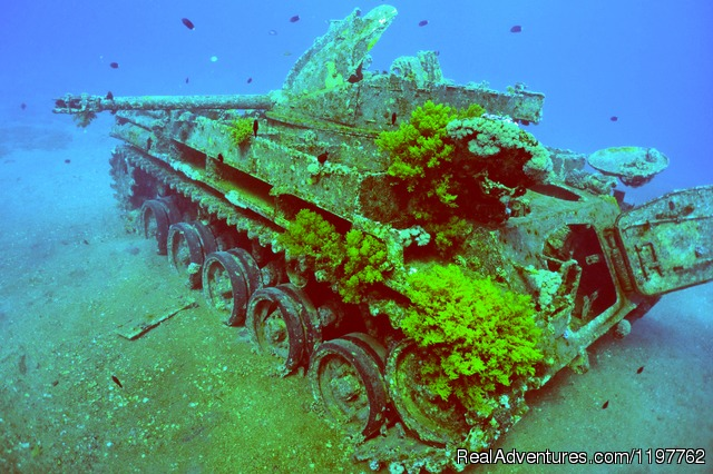 The Tank - Red Sea Diving - With out the crowds