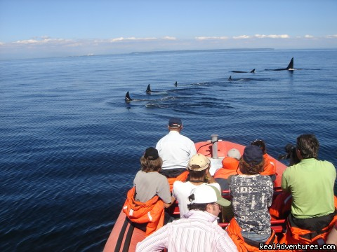 Gulf Islands Canada Vancouver, British Columbia Eco Tours