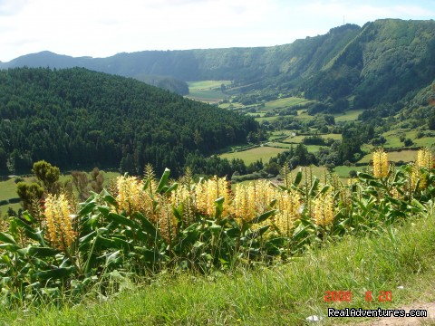 Valley of Sete Cidades Crater - Azores Van & Taxi Tours