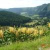 Valley of Sete Cidades Crater