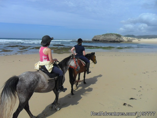 Mkulu Kei Horse Trails and Riding Holidays