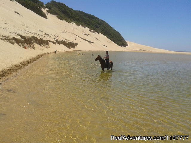 Image #4 of 4 - Mkulu Kei Horse Trails and Riding Holidays