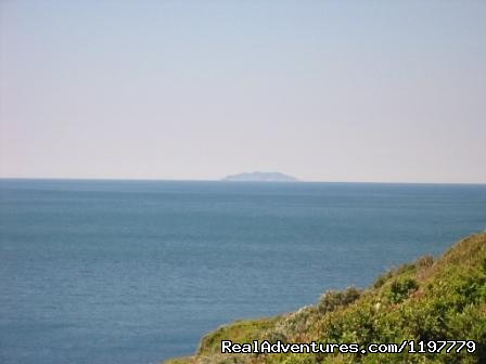 Capraia island - Holiday apartment Tuscany coast near Pisa