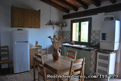 Grecale kitchen - Holiday apartment Tuscany coast near Pisa