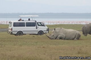 Kenya and Tanzania Safari Holidays