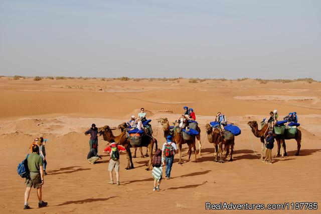 Premium Morocco Camel Trek Tours (#4 of 18) - Premium Morocco Tours