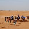 Premium Morocco Camel Trek Tours