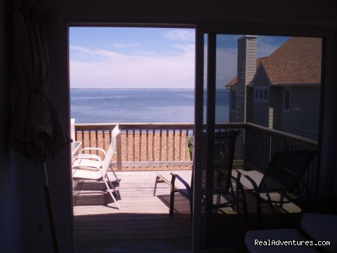 view from the great room - Waterfront Beach House