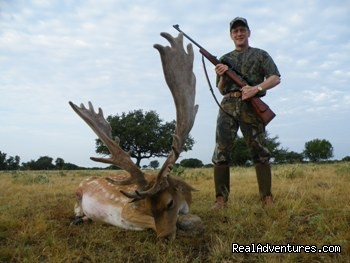 Fallow Deer Hunts (#10 of 21) - Hunting Packages in Texas Hill Country