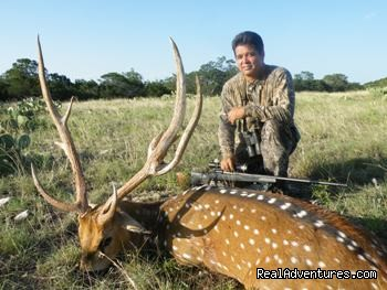 Non Typical Axis Hunt (#18 of 21) - Hunting Packages in Texas Hill Country
