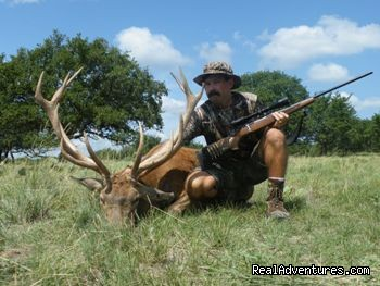 Gold Medal Red Stag Hunt - Hunting Packages in Texas Hill Country