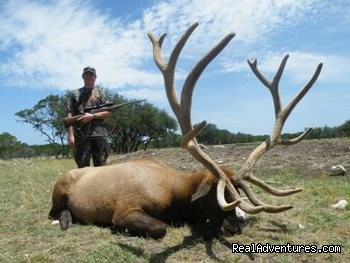 412 B&C Elk Hunt (#20 of 21) - Hunting Packages in Texas Hill Country