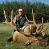 420 Boone and Crockett Elk Hunt