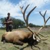 412 B&C Elk Hunt
