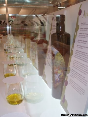 Olive Oil Tasting Madrid (#4 of 4) - Culinary Vacations in Spain