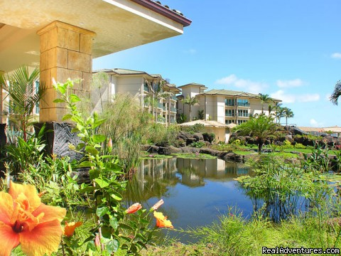 Lush tropical landscaping around the koi pond - Guests Rave about Us See Why Resort+Snorkel Gear