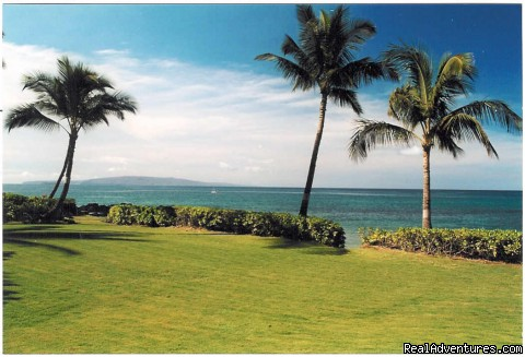 large yard from Wailele views the ocean - Wailele Ocean Front Beach Home-Maui