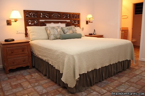 North bedroom has king size bed and adjoining bath - Wailele Ocean Front Beach Home-Maui