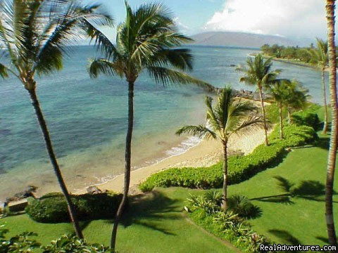 great beach in front of Wailele - Wailele Ocean Front Beach Home-Maui