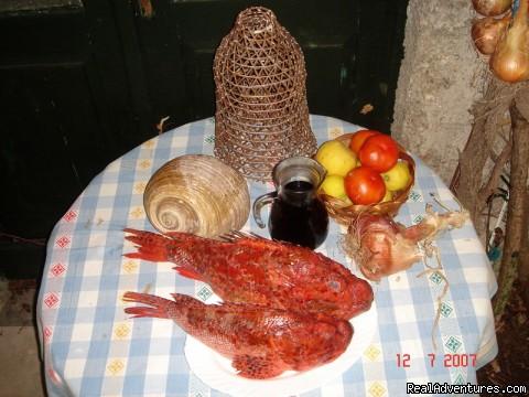 villa Radulj organic food