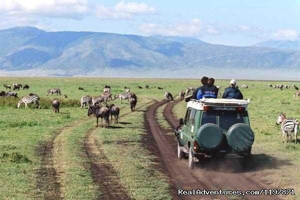 Image #7/9 | 14 Nights Safari in Kenya and Tanzania