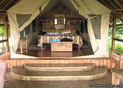 Luxury Tented Camp (Samburu Ashnil Tented Camp) - 14 Nights Safari in Kenya and Tanzania