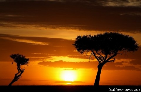 African Sun set - 14 Nights Safari in Kenya and Tanzania