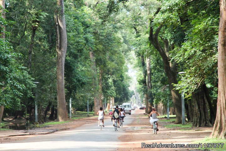 Cycling tours to explore Angkor Wat, Cambodia | Image #7/10 | Cycling to Coastal Cambodia 8 days