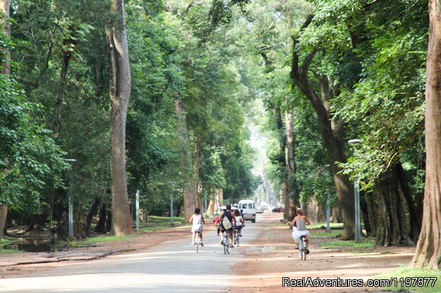 Cycling tours to explore Angkor Wat, Cambodia - Cycling to explore Angkor Temples, Cambodia 7 days
