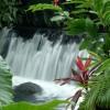 Hote Springs Costa Rica