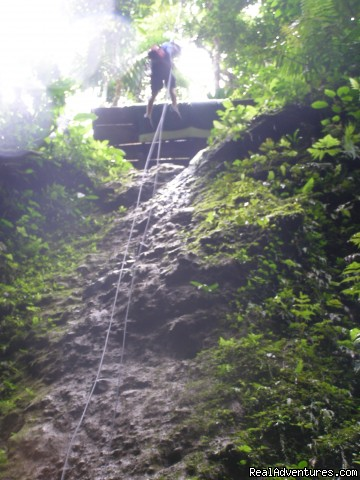 Platforms are from 129 to 165 from the canyon floor (#4 of 10) - Bill Beard's Canyoning & Waterfall Rappelling