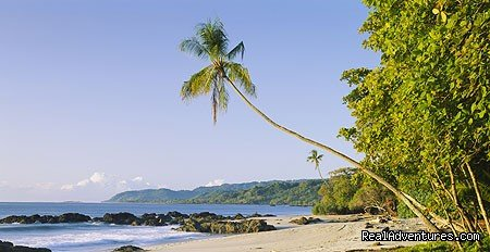 Secluded beach in Costa Rica